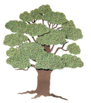 Summer Tree  Embellishment - Jolee's By You