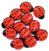 Ladybug Buttons