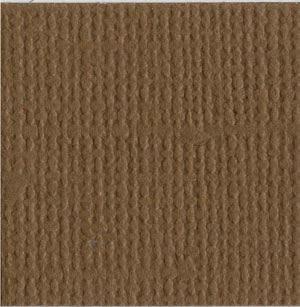 Walnut 12 x 12 Bazzill Cardstock