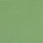 Guacamole 12 x 12 Bazzill Cardstock