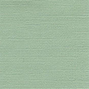 River Reed Bazzill Cardstock