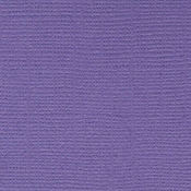 Purple Pizzaz 12 x 12 Bazzill Cardstock