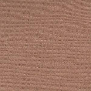 Cinnamon Stick 12 x 12 Bazzill Cardstock