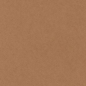Cocoa 12 x 12 Bazzill Cardstock