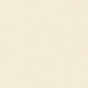 Cream Puff 12 x 12 Bazzill Cardstock