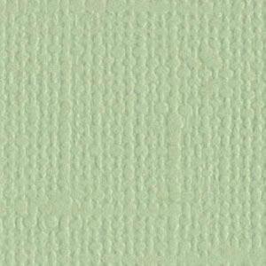 Aloe Vera 12x12 Bazzill Cardstock
