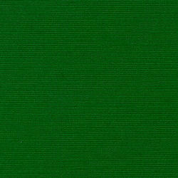 Bazzill Green 12 x 12 Bazzill Cardstock
