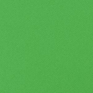 Grasshopper Bazzill Cardstock