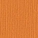 Apricot 12 x 12 Bazzill Cardstock