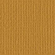 Honeycomb 12 x 12 Bazzill Cardstock
