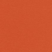 Bazzill Orange 12 x 12 Bazzill Cardstock