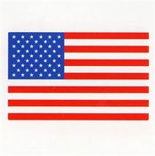 American Flag Patch - Mrs Grossman's Stickers
