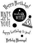 Birthday - My Sentiments Exactly Clear Stamps