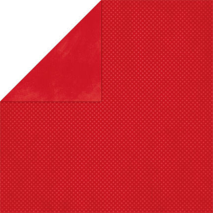 Wild Berry Red  Double Dot Cardstock - Bo Bunny