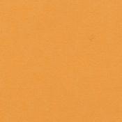 Mango 12 x 12 Bazzill Cardstock