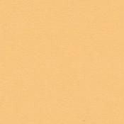 Citrus 12 x 12 Bazzill Cardstock