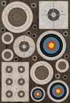 Targets Sticker Stickers by Karen Foster