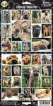 Chinese Shar-Pei Sticker