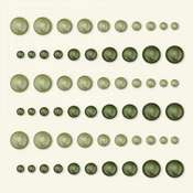 Grass & Ivy Pearls by Basic Grey