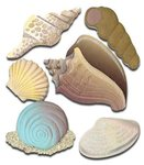 Seashells 3D  Stickers - Jolee's Boutique