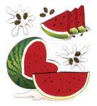 Watermelon 3D  Stickers - Jolee's Boutique