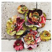 Gallery Roses Marcel by Prima