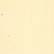 Sawdust 12x12 Bazzill Cardstock