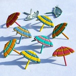 Beach Umbrella Birds