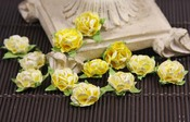 Sunshine Cameo Roses by Prima
