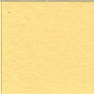 Frosted Yellow 12 x 12 Bazzill Cardstock