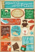 Growing Up Stickers by Karen Foster