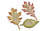 Tattered Leaves Bigz Die - Tim Holtz