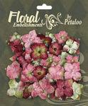 Rose Velvet Hydrangeas - Chantilly Collection By Petaloo