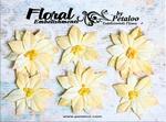 Cream Poinsettia Blossoms Petaloo Canterbury Collection