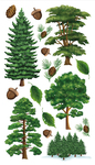 Majestic Trees Sticko Stickers