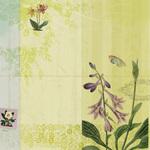 Flora & Fauna Woodland Floral Paper