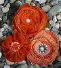 Orange Fabric Flowers By Petaloo