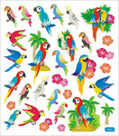 Parrots Beautiful Birds Stickers
