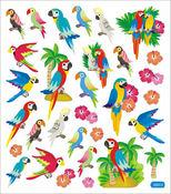 Parrots Beautiful Birds Stickers