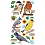 Top US Birds Stickers