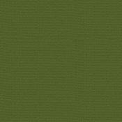 Nixon Green 12 x 12 Bazzill Cardstock