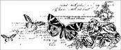 Botanical Clear Stamp By Kaiser Craft