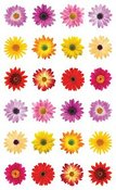 Flowers By The Dozen Stickers By Mrs. Grossman