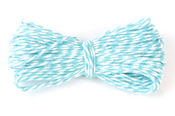 Caribbean Teal Bakers Twine, 15 Yards