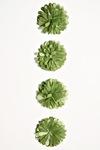 Green Pom Pom Flower Stickers - Fluerettes - Mark Richards