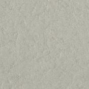 Zinc 12 x 12 Bazzill Cardstock
