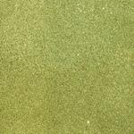 Leaf Glitter Paper - Duo - American Crafts