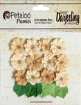 Mini Daisies With Leaves - Naturals - Shabby Beige - Petaloo