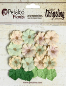Mini Daisies - Pistachio - Petaloo