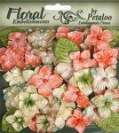 Sienna - Velvet Hydrangeas - Petaloo